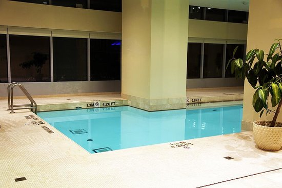 The Ritz-Carlton, Toronto: Ready for a dip ?