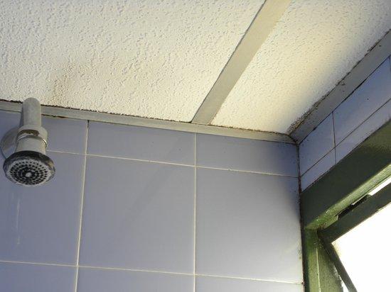 Aconcagua Hotel: Techo de la ducha, con hongos.
