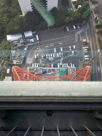 Picture taken from Tokyo Tower, July 2013