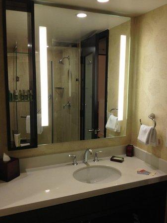 The L.A. Hotel Downtown: Jr Suite Tiny Corner Shower 02/14/2013