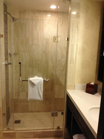 The L.A. Hotel Downtown: Standard Room Shower Stall 11/17/2013
