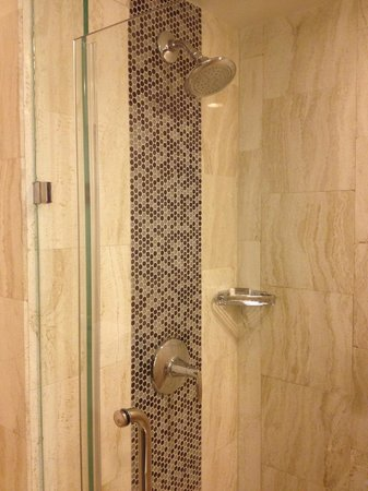 The L.A. Hotel Downtown: Standard Room Shower 11/17/2013