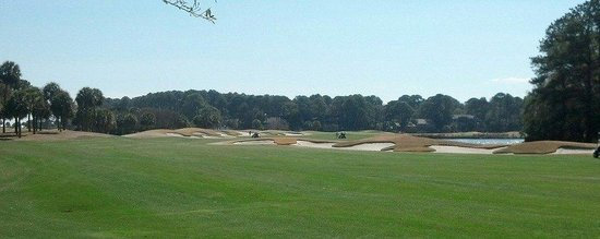 The Golf Courses of Palmetto Dunes: love this hole