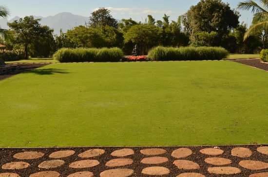 Lumeria Maui Retreat : Beautiful lawn perfect for relaxing or attending a yoga class
