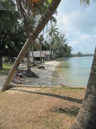 Lipa Lodge Beach Resort : beach