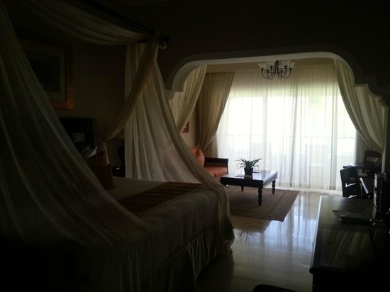 Paradisus Palma Real Golf & Spa Resort : habitación con vista a los jardines