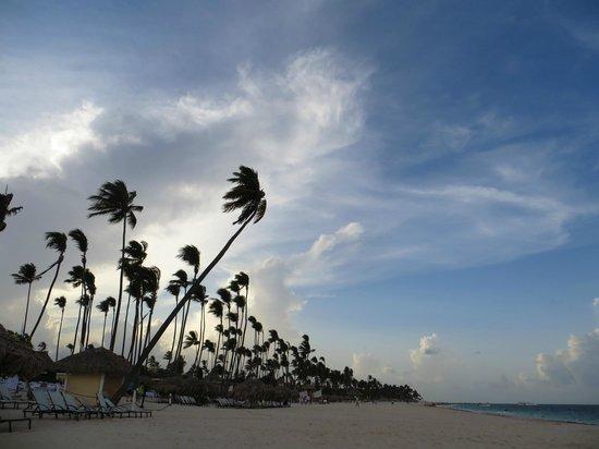 Paradisus Palma Real Golf & Spa Resort : La playa