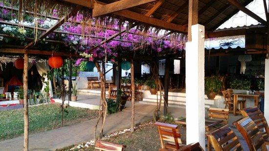 Patty's Secret Garden : Beautiful garden setting
