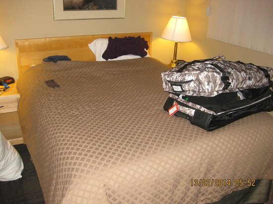 Tunnel Mountain Resort : Schlafzimmer mit Queensizebett