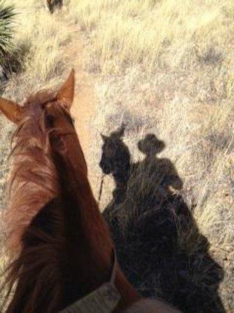 Circle Z Ranch: A glorious morning ride!