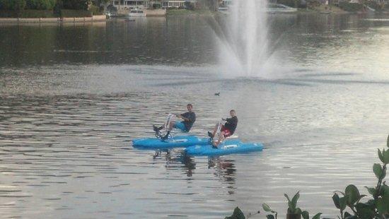 Lakehouse Hotel & Resort : Kids on the lake
