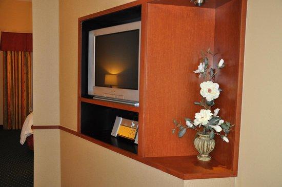 Fairfield Inn & Suites by Marriott Marshall: TV In Room