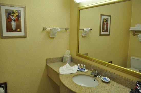 Fairfield Inn & Suites by Marriott Marshall: Bath