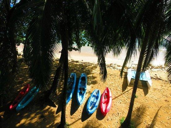 Al Natural Resort: Kayaks to use