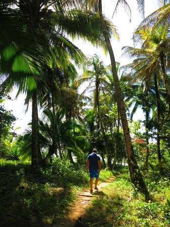 Al Natural Resort: Hike by the beach