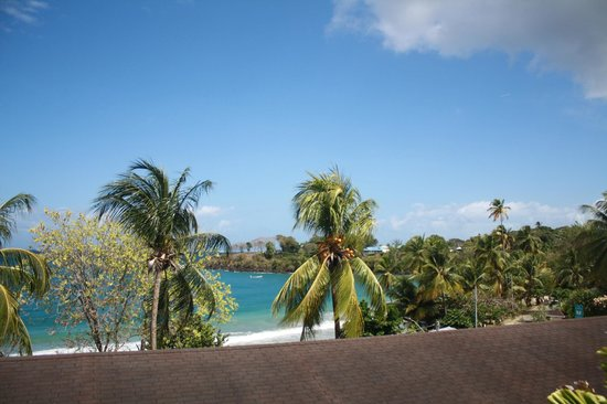Grafton Beach Resort : View from pool to ocean