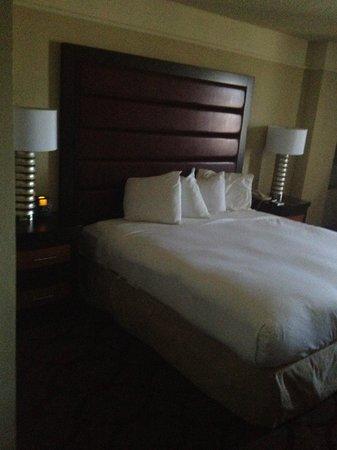 Hilton College Station & Conference Center: King Bed