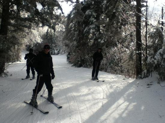 Okemo Mountain Resort : back trail on the mountain.