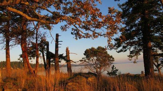 Spindrift Oceanfront Cottages: Sunset on the Peninsula