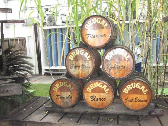 Isaira Tours: Barrels at Brugal Rum Factory Puerto Plata City February 2013