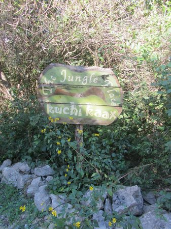 The Jungle Place - Tours : The entrance sign.