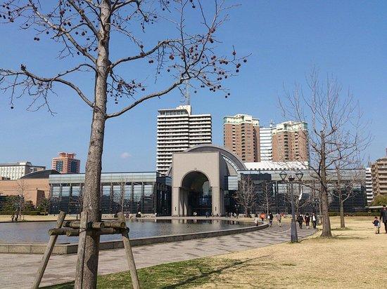 Fukuoka City Museum : 福岡市博物館