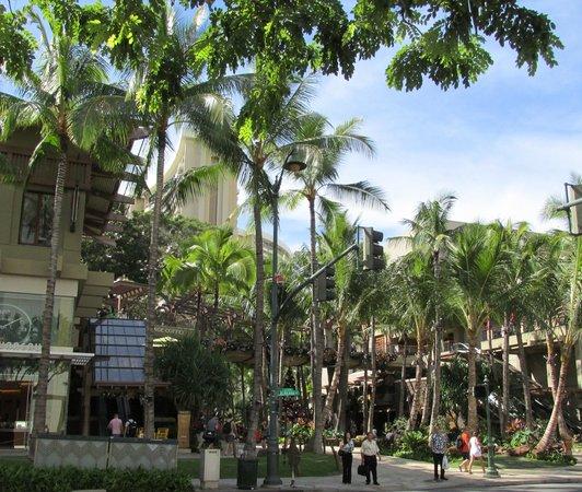 The Royal Hawaiian Center Dec 2013