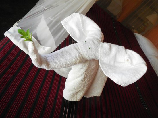 Pliage de serviette de bain photo de hotel villas - Pliage de serviette de bain ...