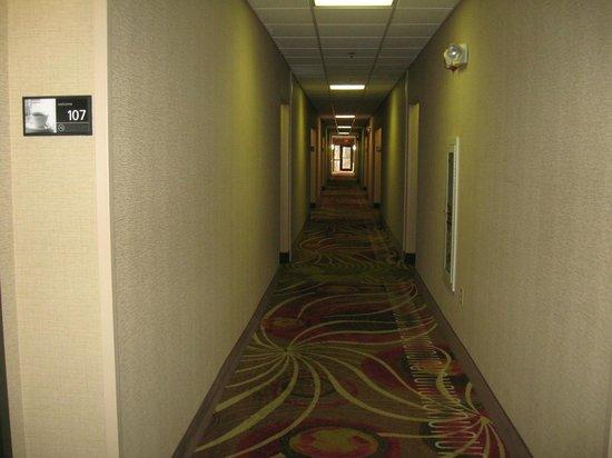 Hampton Inn and Suites Memphis - Wolfchase Galleria : Hallway