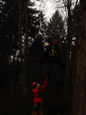 Canopy Tours Northwest : Abseiling