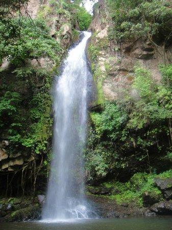 Rincon de La Vieja National Park: Cangrejo Falls