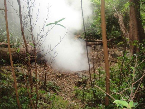 Rincon de La Vieja National Park: Fumaroles