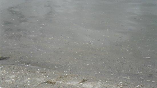 Promenade Angra dos Reis : Aspecto barroso de la llamada erroneamente playa