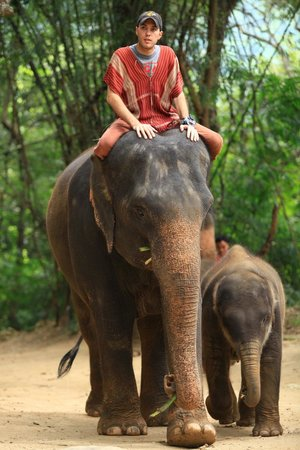 Patara Elephant Farm - Private Tours : Bobby with mother and baby elephant
