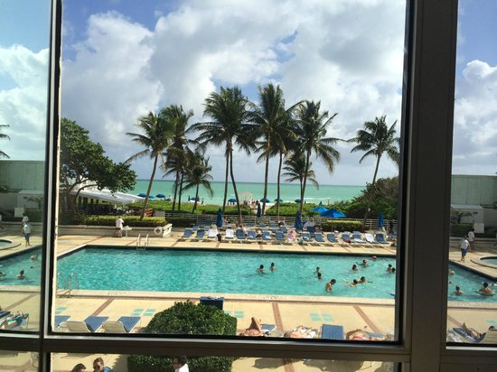 Miami Beach Resort and Spa: Piscina e praia