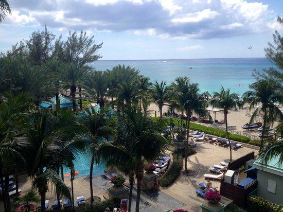 The Westin Grand Cayman Seven Mile Beach Resort & Spa: Best beach, best resort  Seven Mile Beach