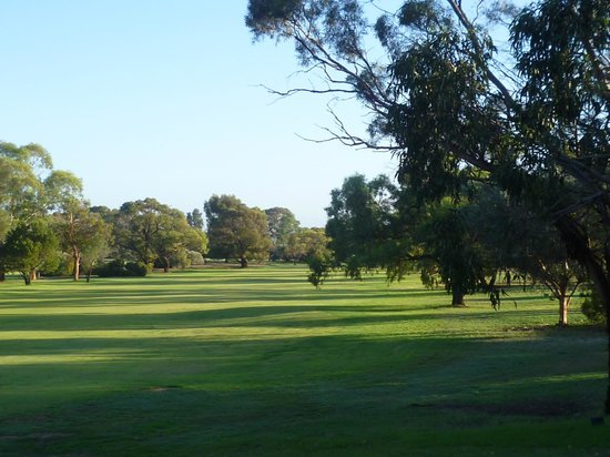 Barmera Country Club: Looking onto golf course from room