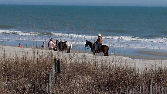 Myrtle Beach Boardwalk & Promenade: horses on the beach