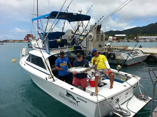 Marlin Queen Fishing Charters : The boat newly painted and catching Yellow Fin tuna