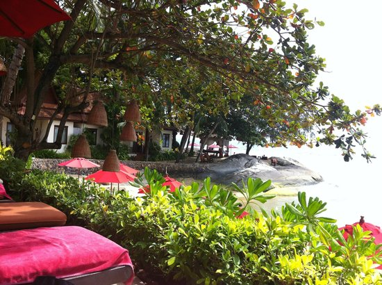 Rocky's Boutique Resort : The view from our pool lounge