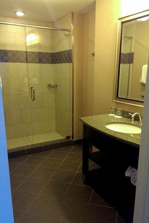 Hotel Julien Dubuque: bathroom