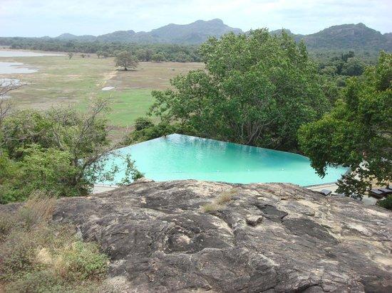 Heritance Kandalama: One of the pools (infinity pool)