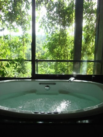 Heritance Kandalama: Jacuzzi and the view from the bathroom