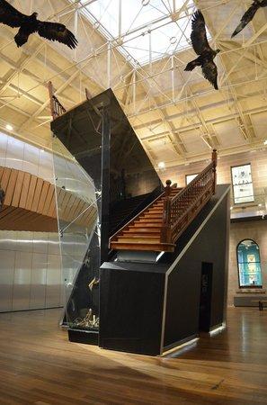Tasmanian Museum and Art Gallery (2)