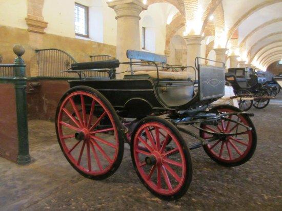 Caballerizas Reales de Cordoba : Старинные конюшни