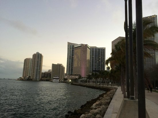 InterContinental Miami: View of the hotel from the park