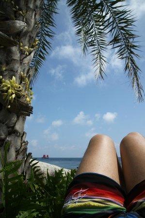 Lazy Day's Samui Beach Resort : lazy days