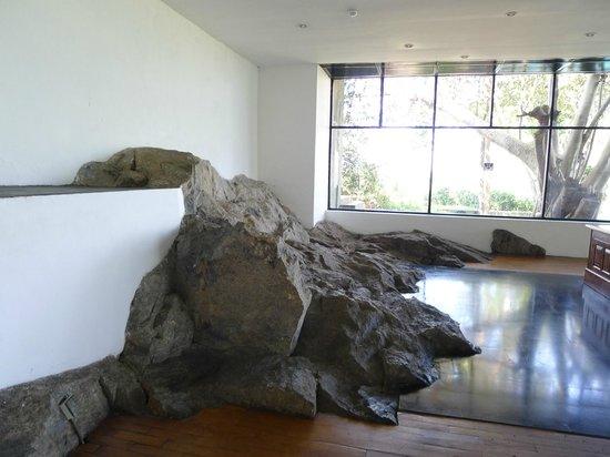 Heritance Kandalama: rocks!