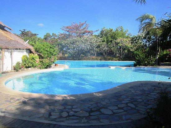 Swimming Pool Picture Of Stilts Calatagan Beach Resort Calatagan Tripadvisor