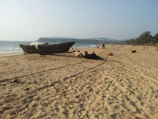 My Friend's Place: Agonda beach